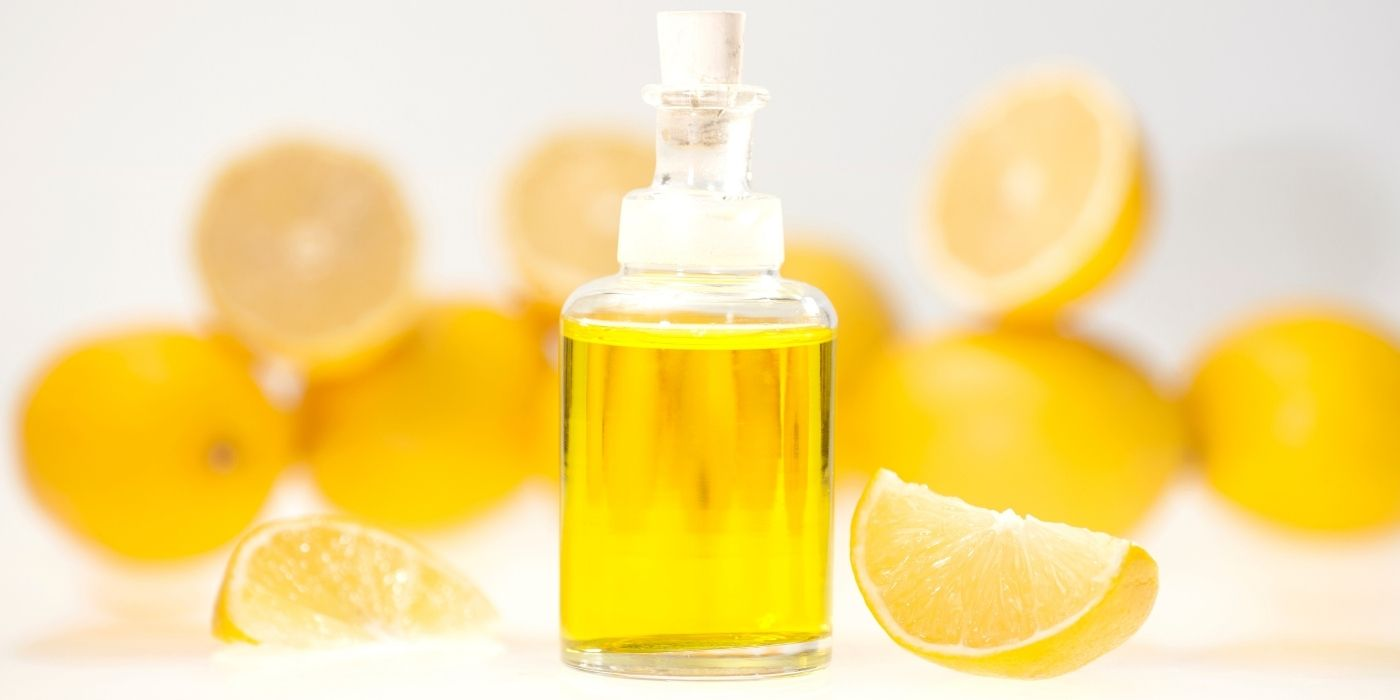 Zitronenmyrte