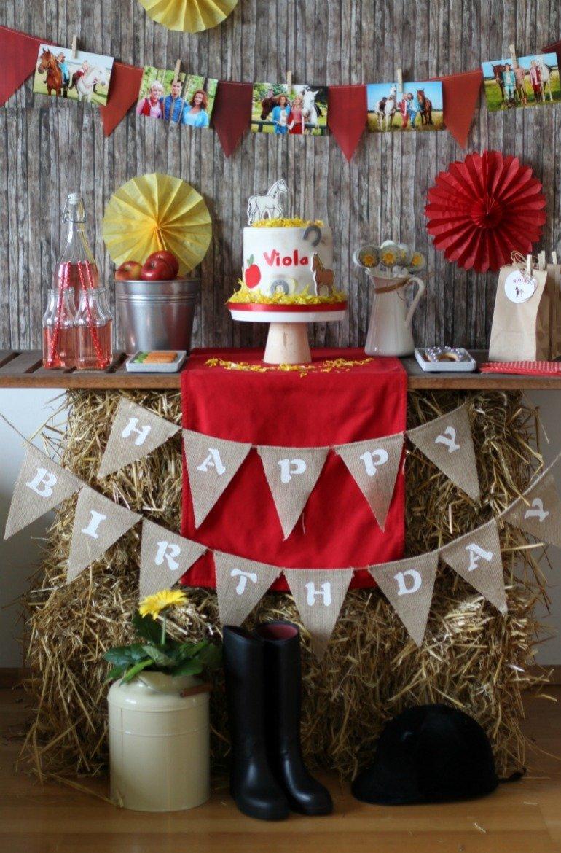 Eine Pfede-Kinder-Geburtstag mit Bibi und Tina - tolle Dekoideen, Kuche, Torte, Kekse und Spiele