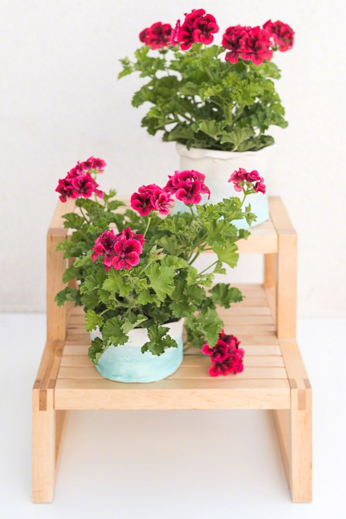 Blumentopf DIY Fimo