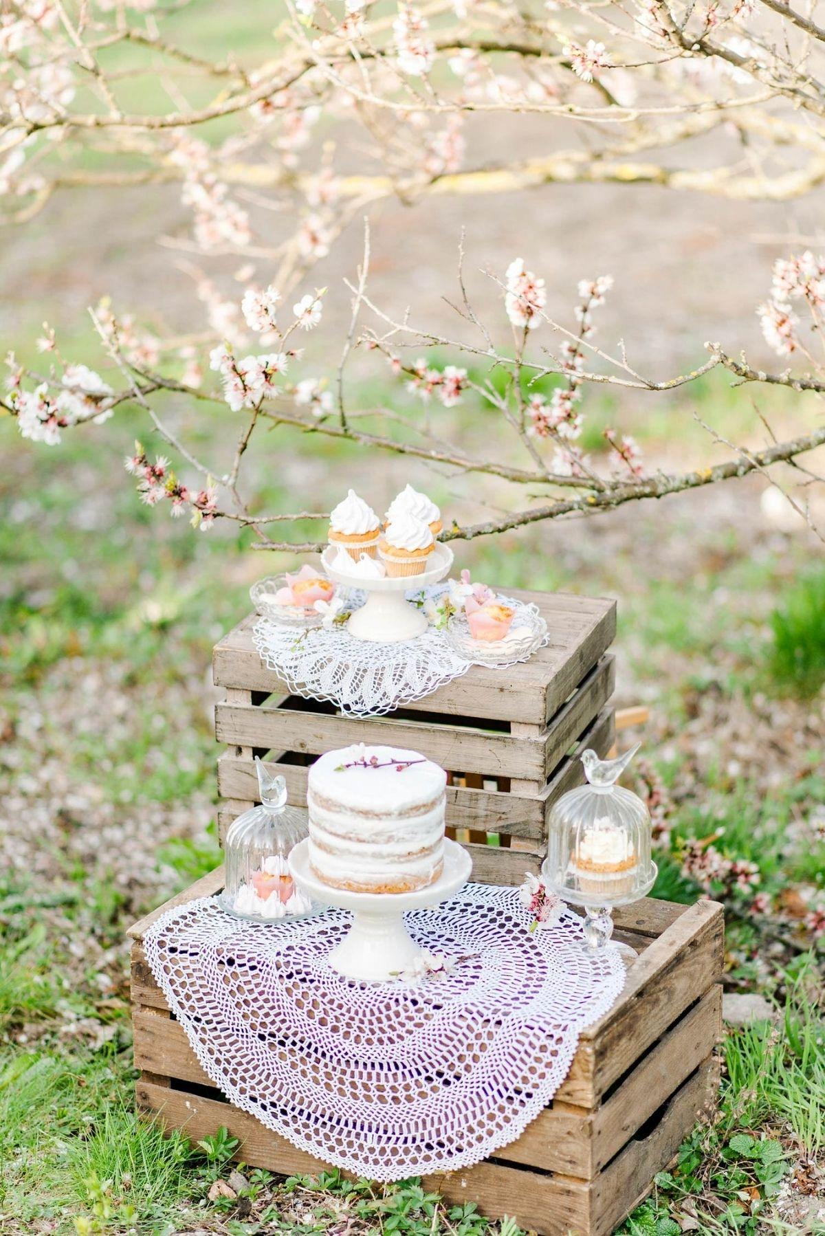 Verlobung, Hochzeitstag oder Elopement unter Kirschblüten im Frühling