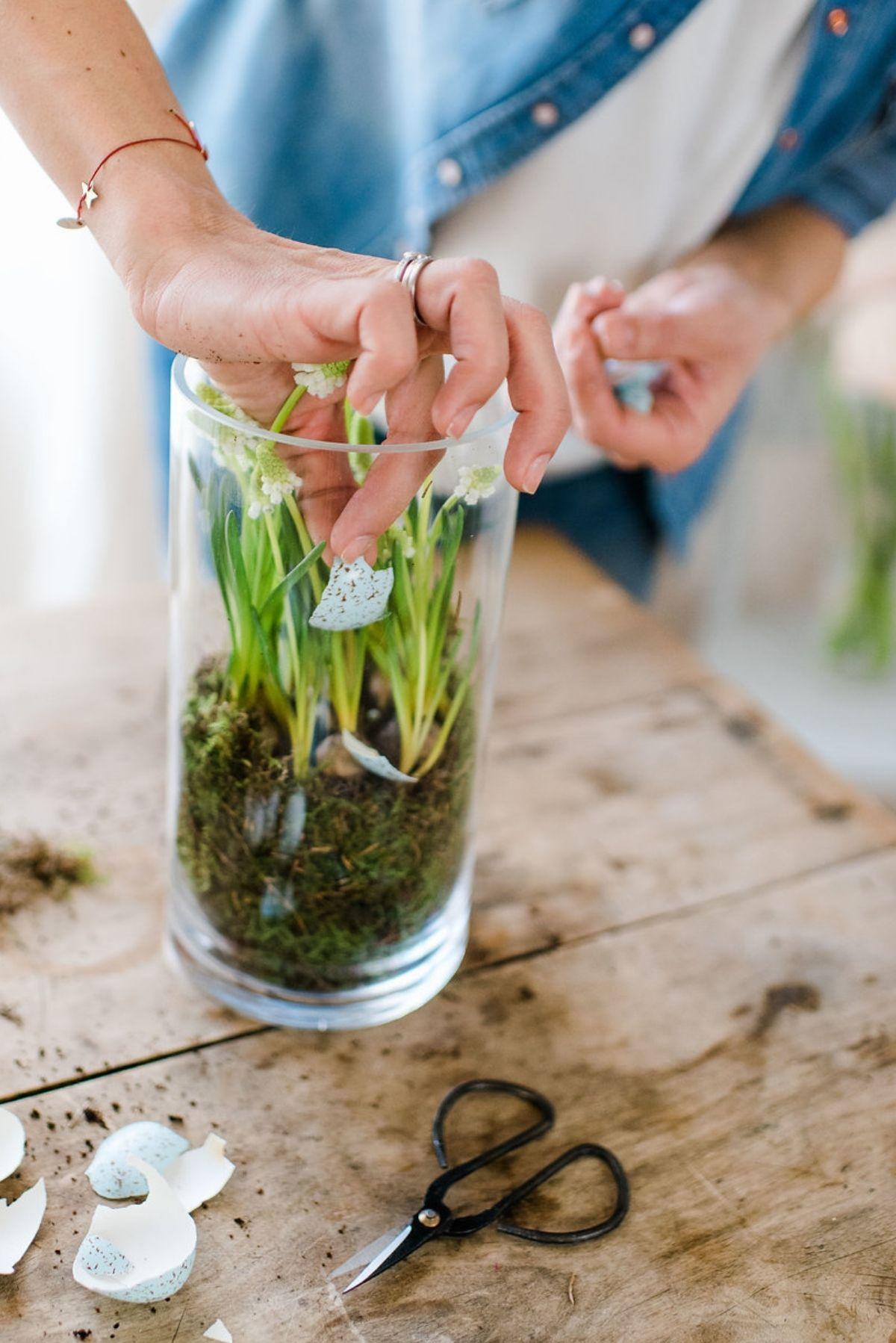 Hyazinthen im Glas DIY Inspiration Fruehling und Ostern