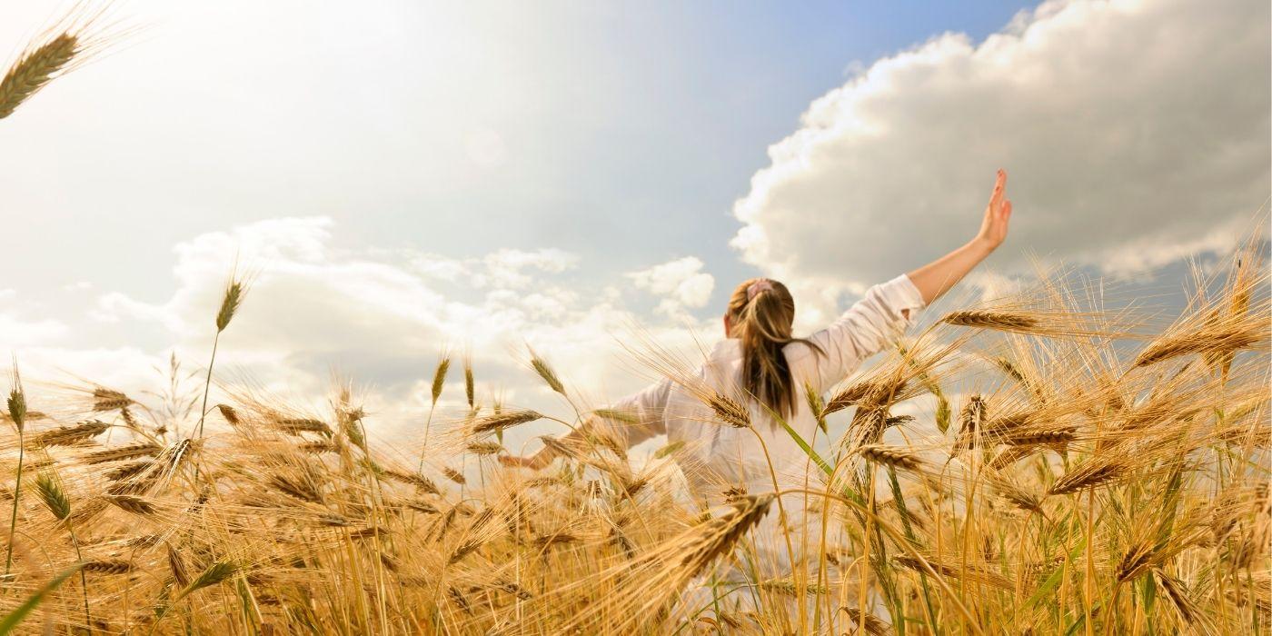 Ernten und Empfangen Ernte Meditation Laura Hainzl